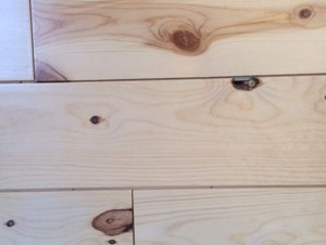 The Tongue & Groove - Nickel Plank Pine